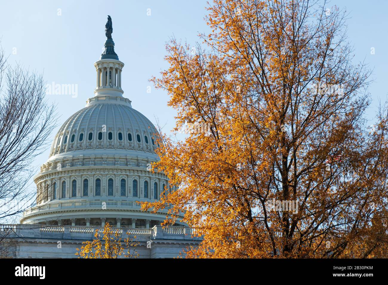 The United States Capital Building on a sunny day in Washington. Stock Photo