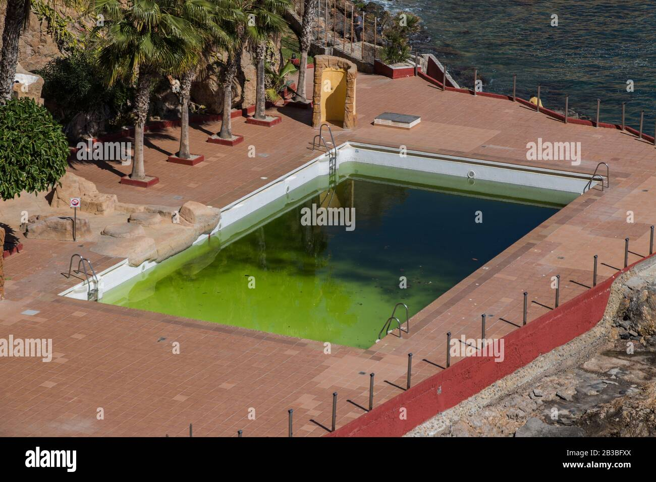 A Dirty And Abandoned Pool With Green Water Scary Pool Dyrty Waterl Abandoned Swimming Pool Ruined Pool Stock Photo Alamy