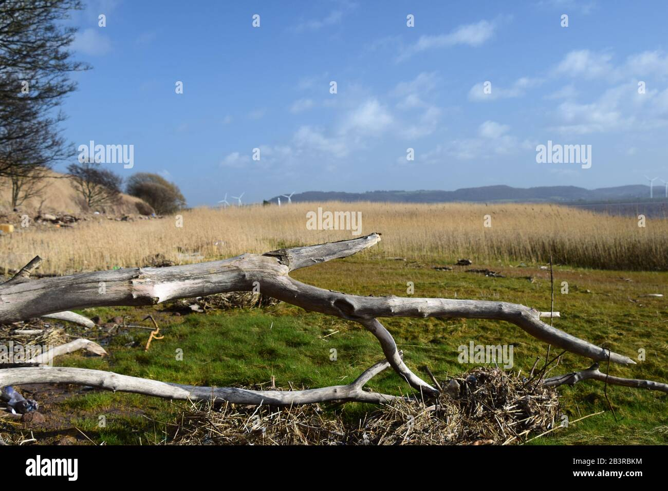 The River Mersey Estuary North Shore at the Hale Conservation Area Stock Photo