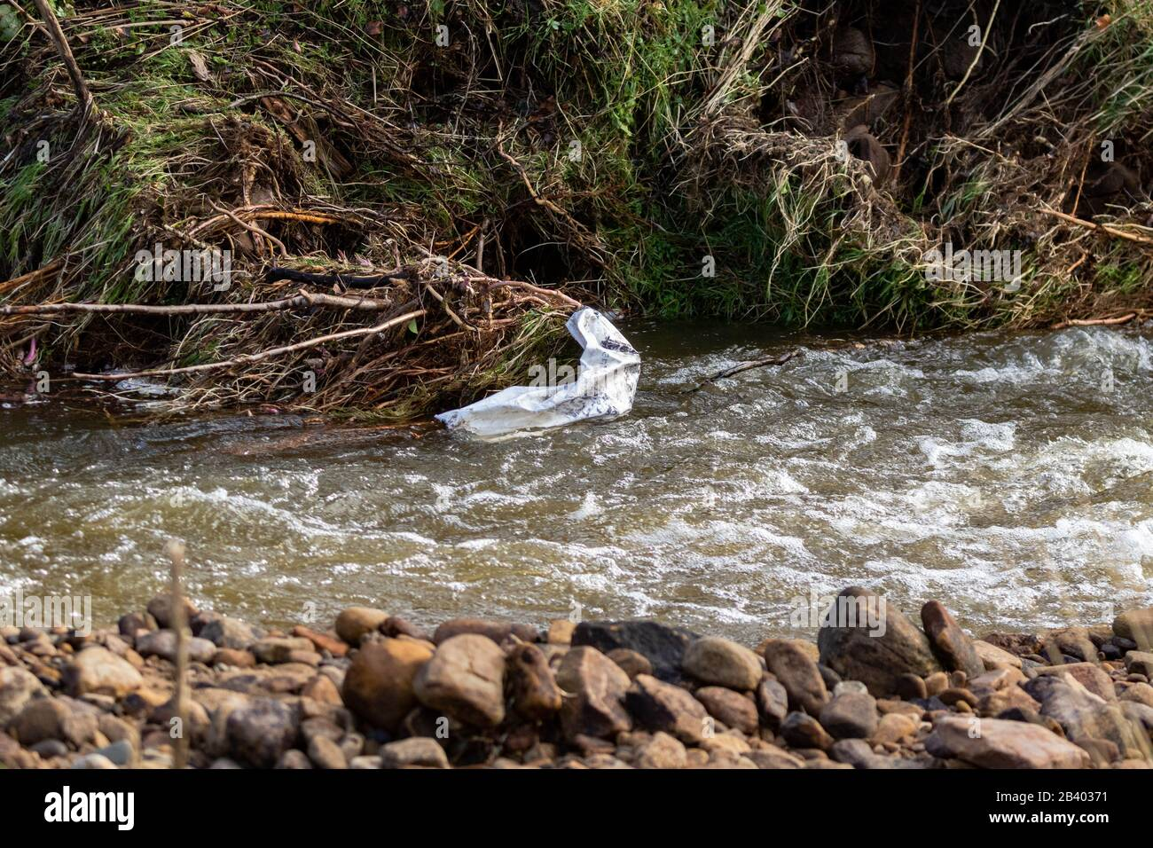 A plastic sack caught up at the side of a stream. Stock Photo