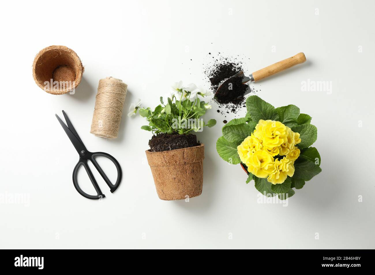 Flowers And Gardening Tools On White Background Top View Stock