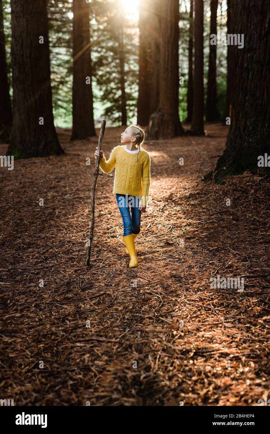 Preteen girl hiking in forest with beautiful light Stock Photo