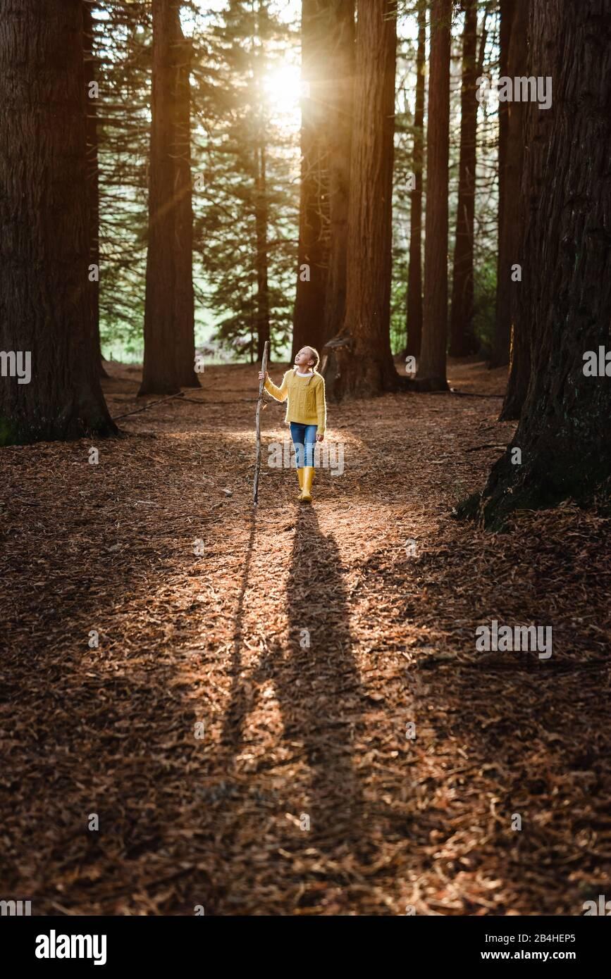 Tween girl walking through beautiful forest in New Zealand Stock Photo