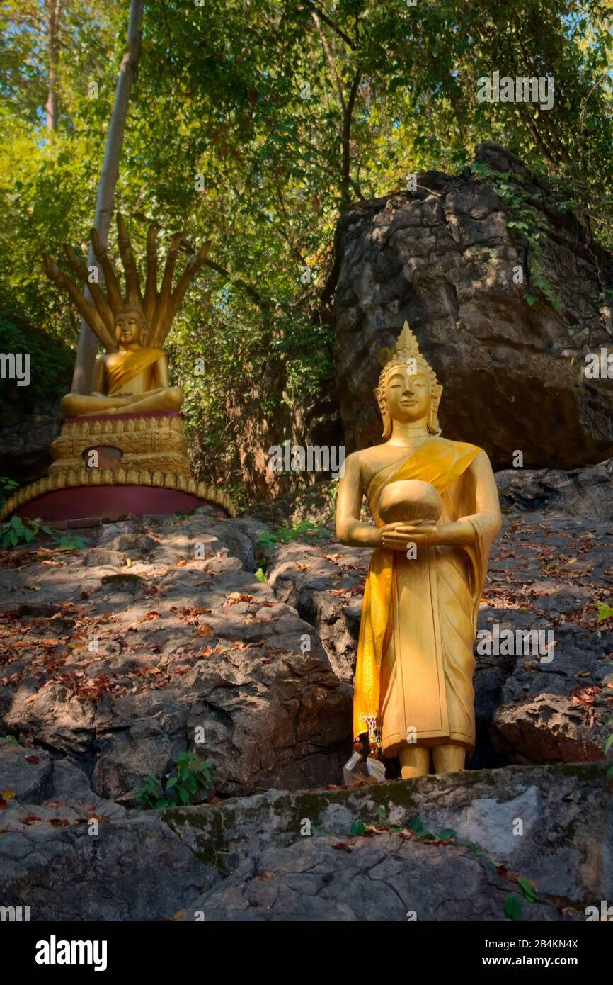 Golden statues of Buddha in the jungle, on the way to the summit of Mt Phou Si, a sacred mountain located in Luang Prabang, Laos. Stock Photo