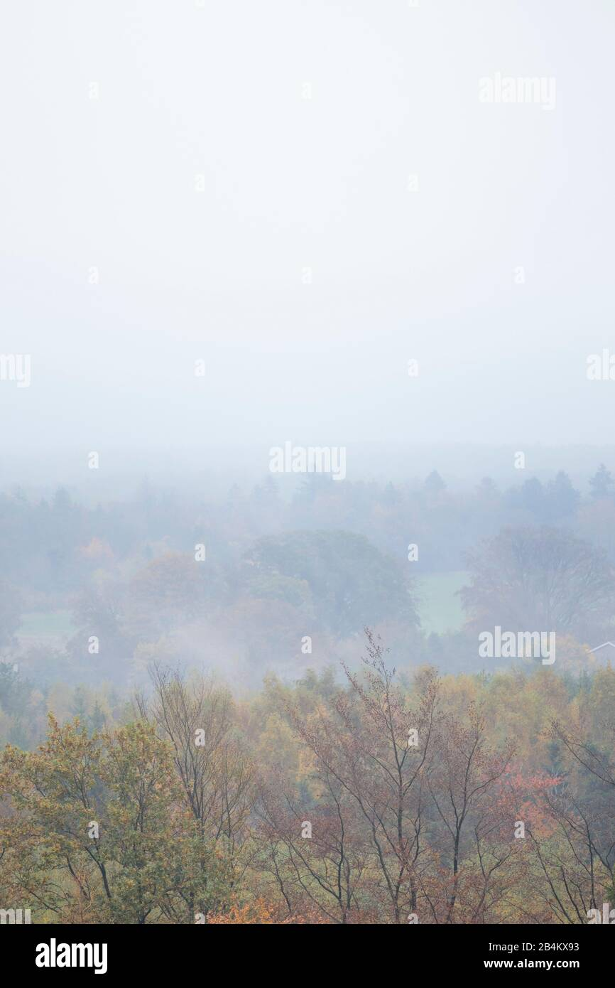 Europe, Denmark, Bornholm. View from the height above the Ekkodalen to the fog-covered South Bornholm. Stock Photo