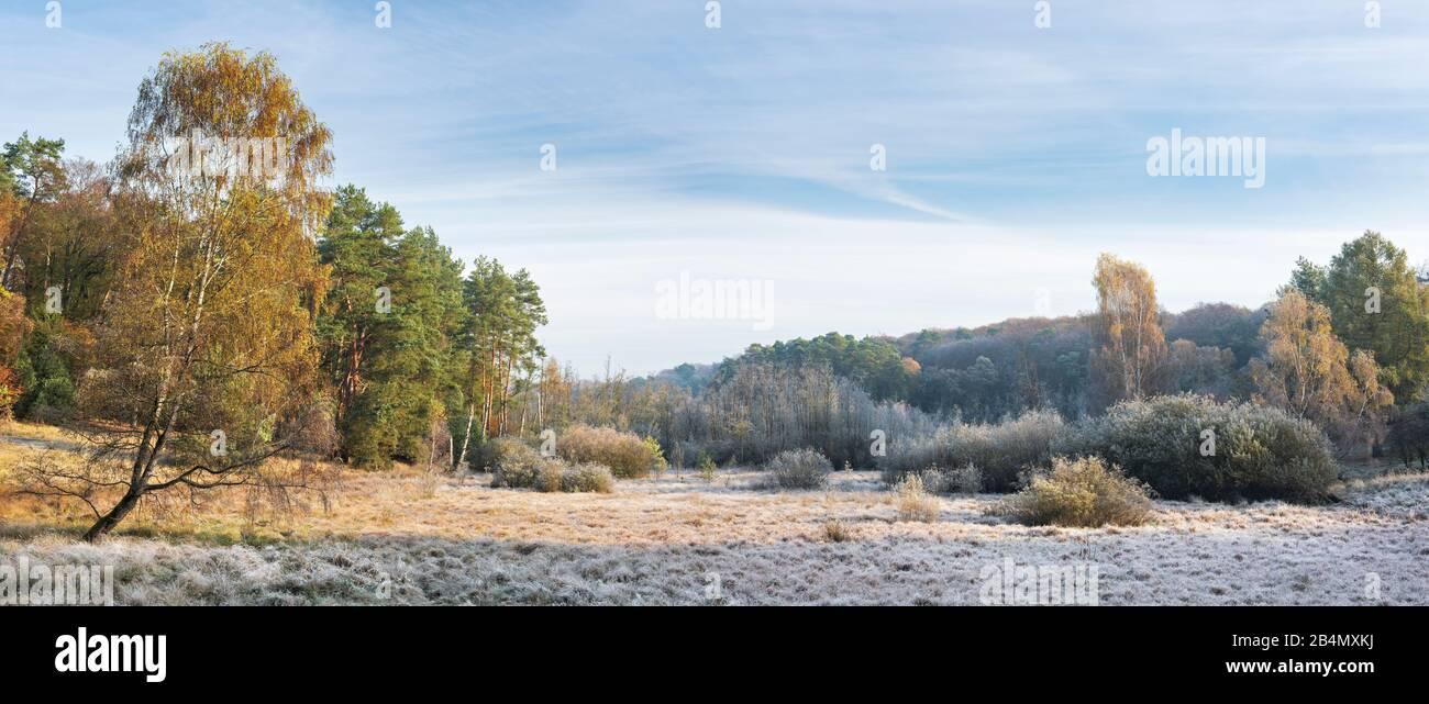 Deutschland, Mecklenburg-Vorpommern, Müritz-Nationalpark, Teilgebiet Serrahn, Landschaft mit Moor bedeckt von Raureif im Herbst Stock Photo