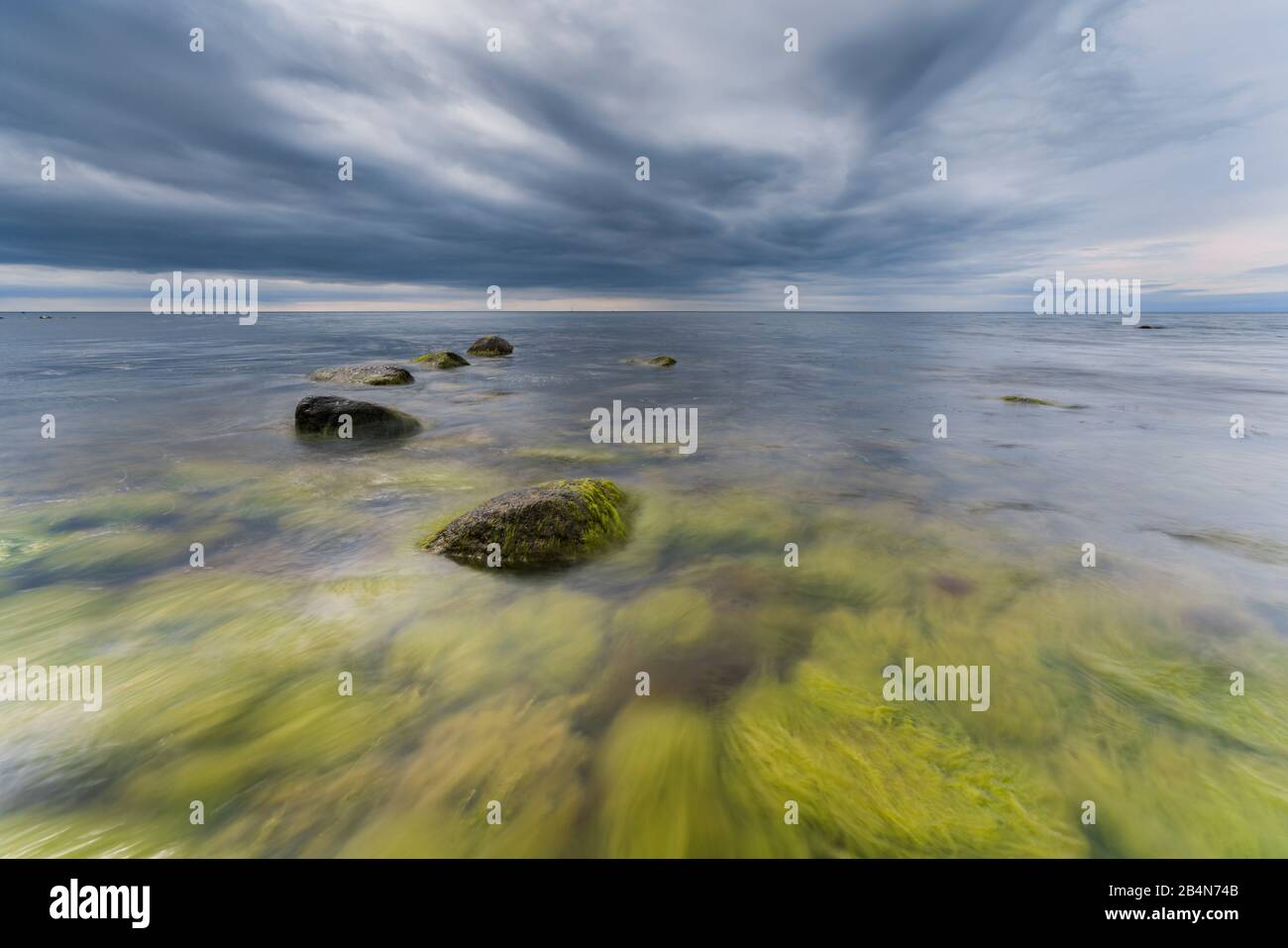 Baltic Sea in the evening light, long exposure, beach with stones and algae that are washed by the water, Stock Photo