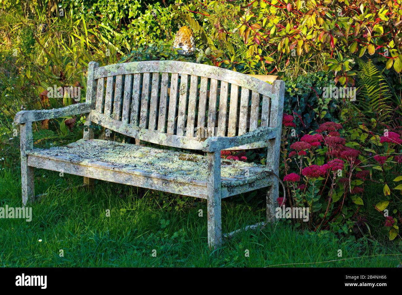 Wooden Bench Covered With Lichen In The Natural Garden In The Cote Des Bruyeres Region In The Finistère Department Stock Photo Alamy