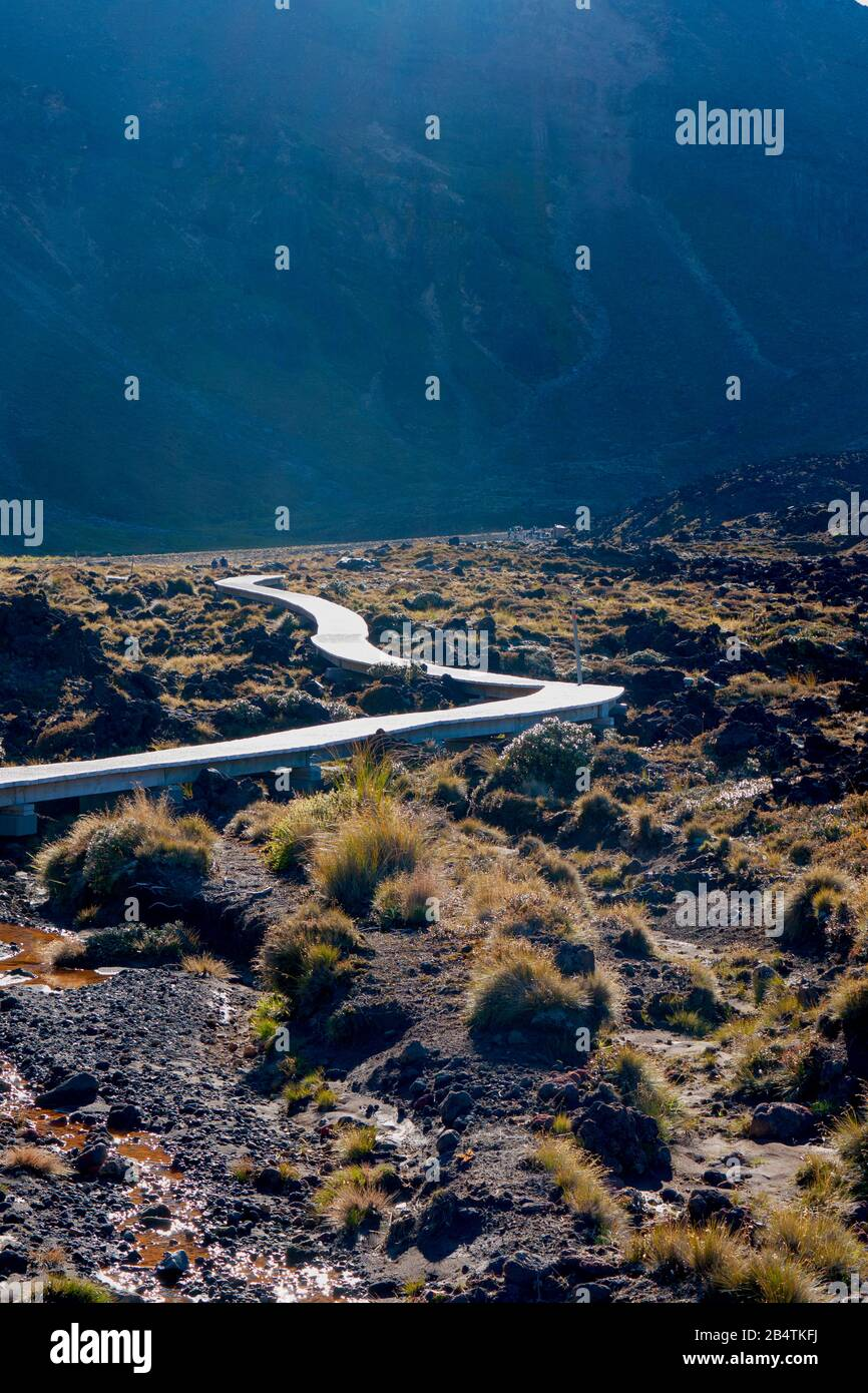 Boardwalk at Mangatepopo, Tongariro Alpine Crossing, New Zealand Stock Photo
