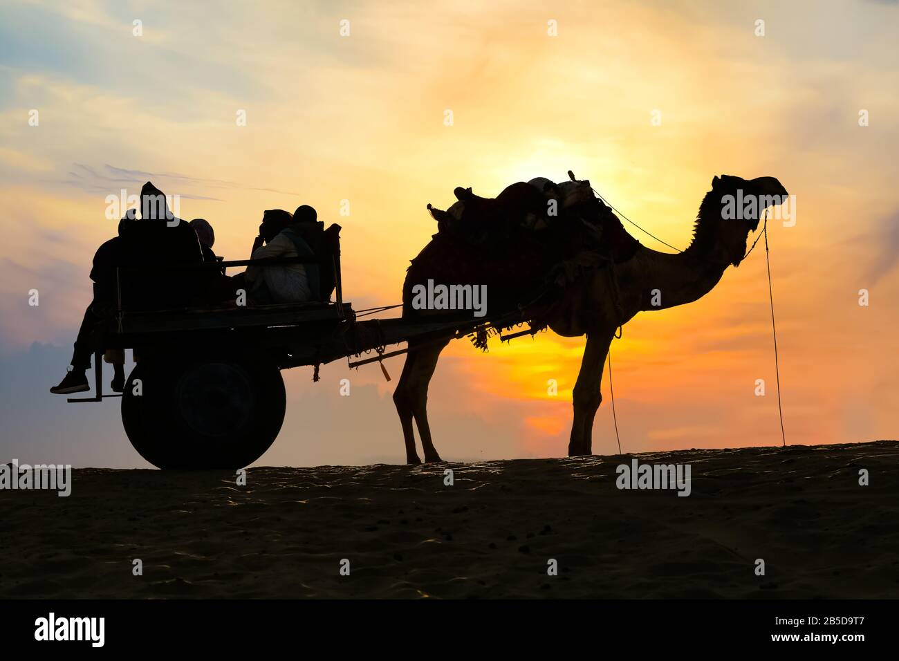 Camel cart with tourist in silhouette at sunset at Thar desert Jaisalmer Rajasthan, India Stock Photo