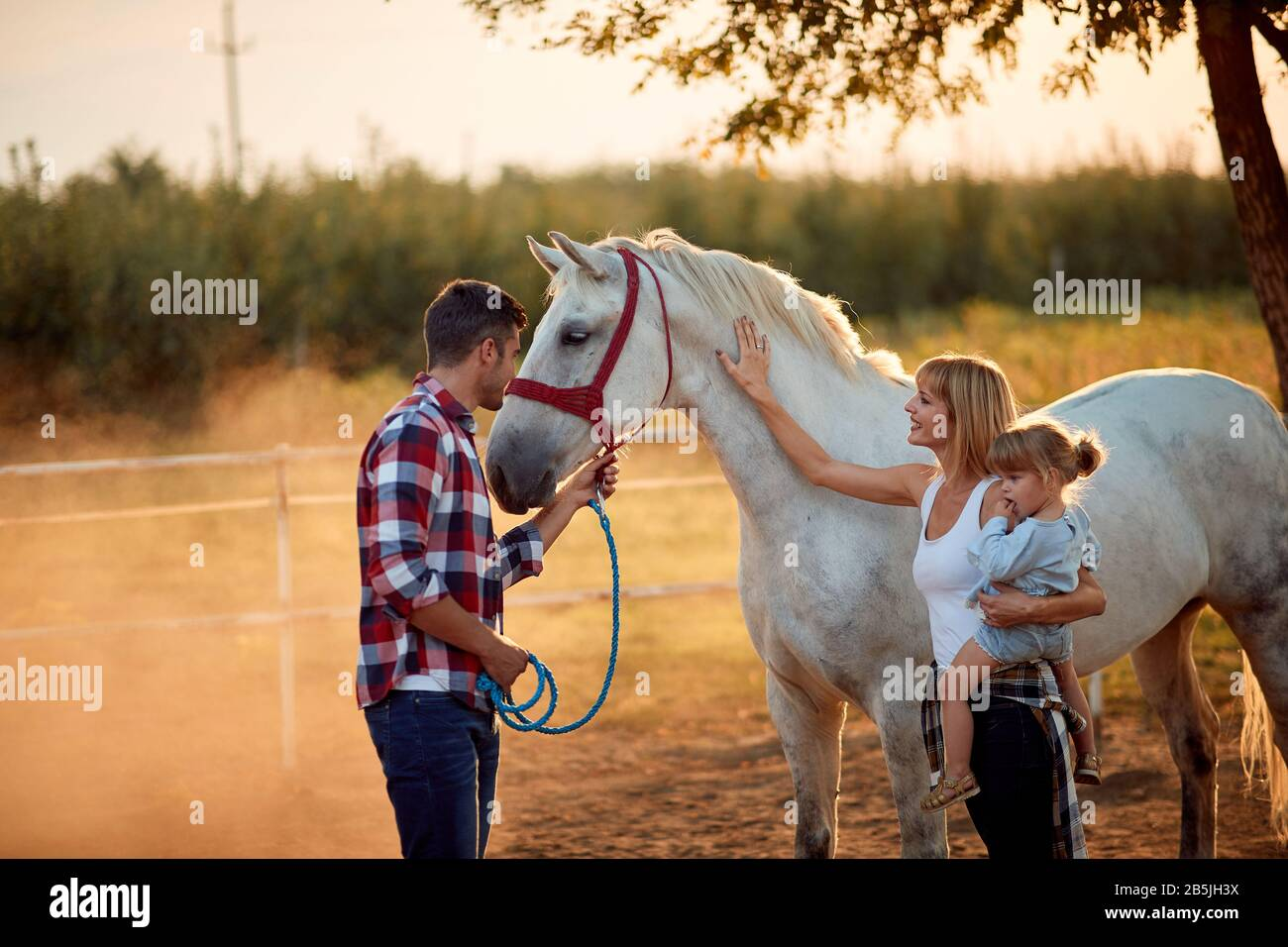 Family Petting Horses People Have A Fun With A Beautiful Horse Stock Photo Alamy