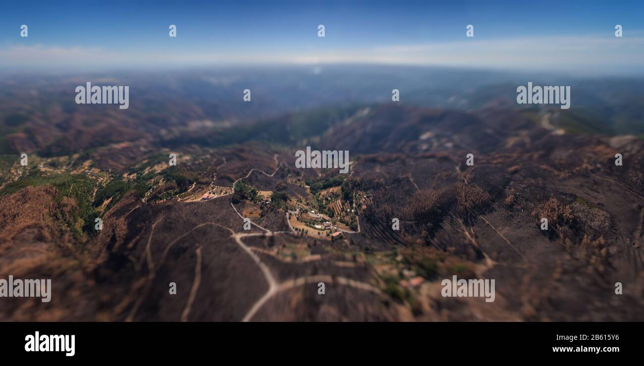 Burned forest Monchique. View from the sky. In miniature. Stock Photo