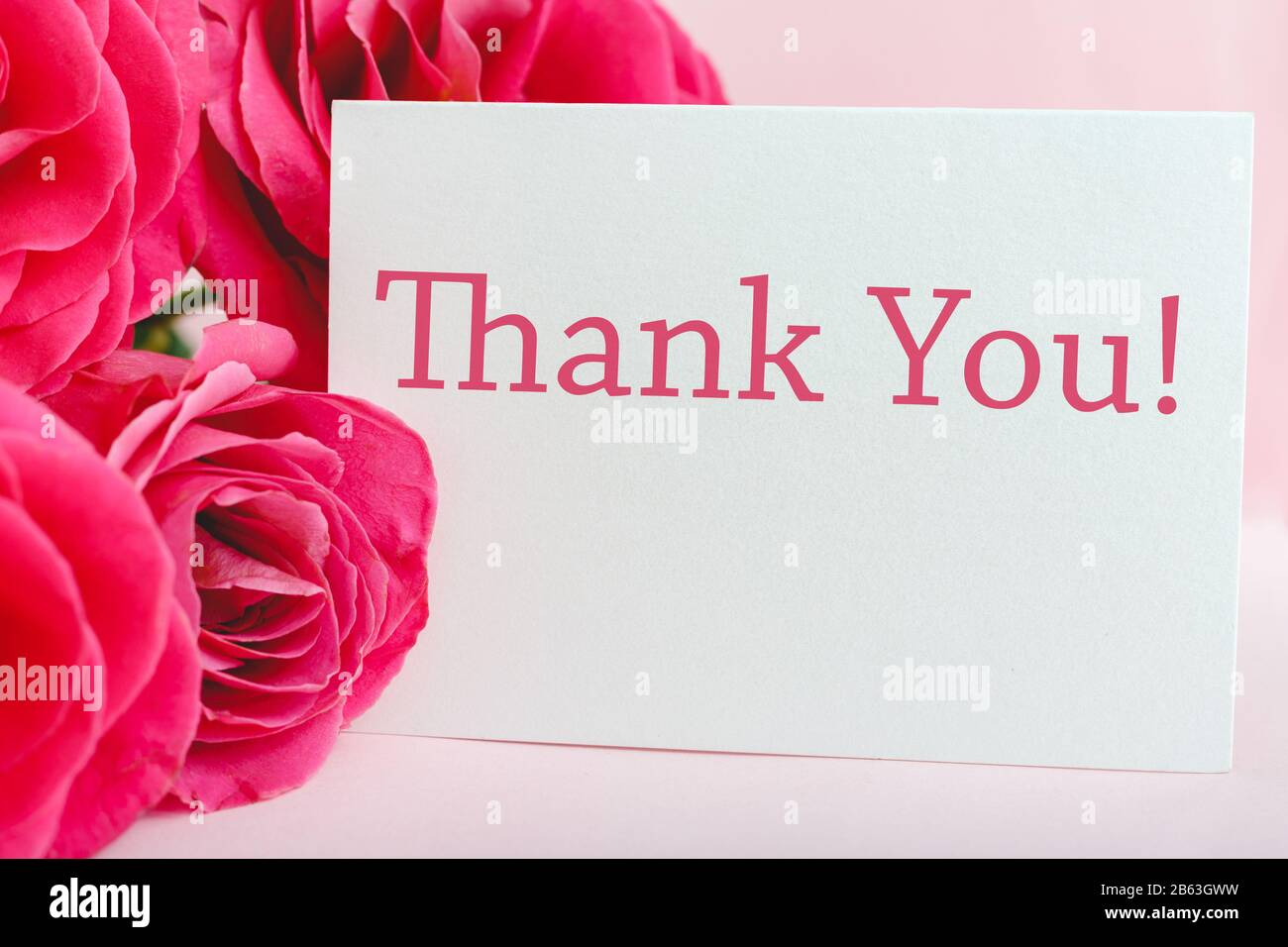 Pink Orchid Floral Wedding Thank You Notes 24//pk with Envelopes