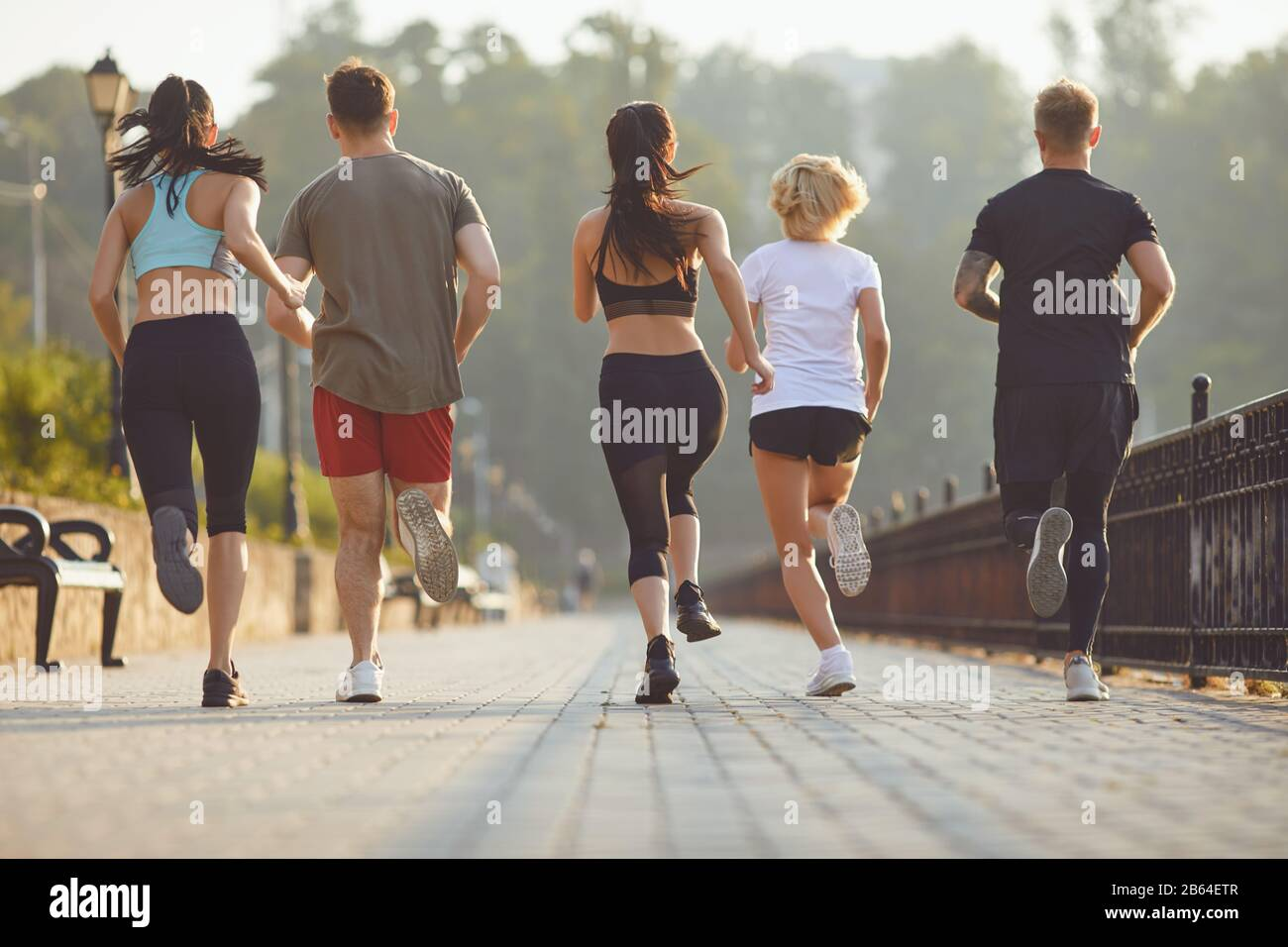 Group of runners in the park in the morning. Stock Photo