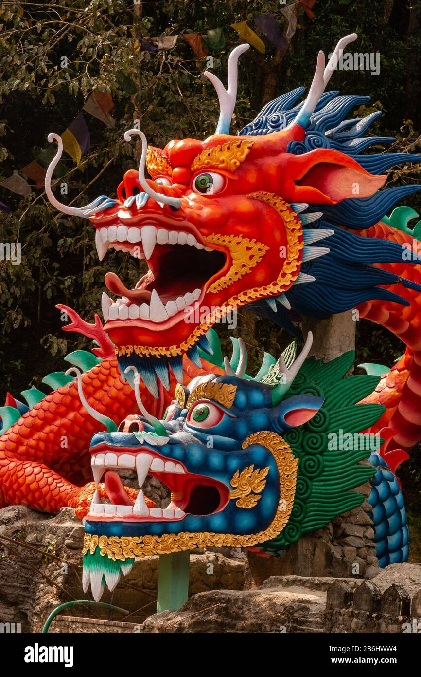 India Dragon High Resolution Stock Photography and Images - Alamy
