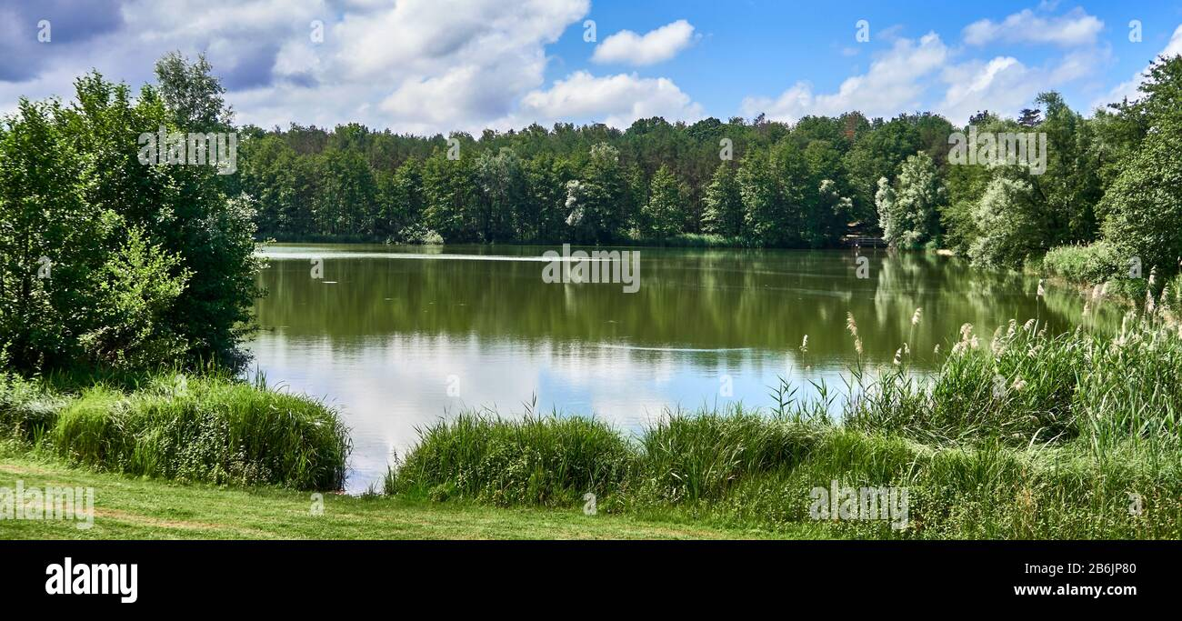 France, Ain departement, Auvergne - Rhone - Alpes région. Cuisiat area, La Grange du Pin leisure center is set around the lake Stock Photo