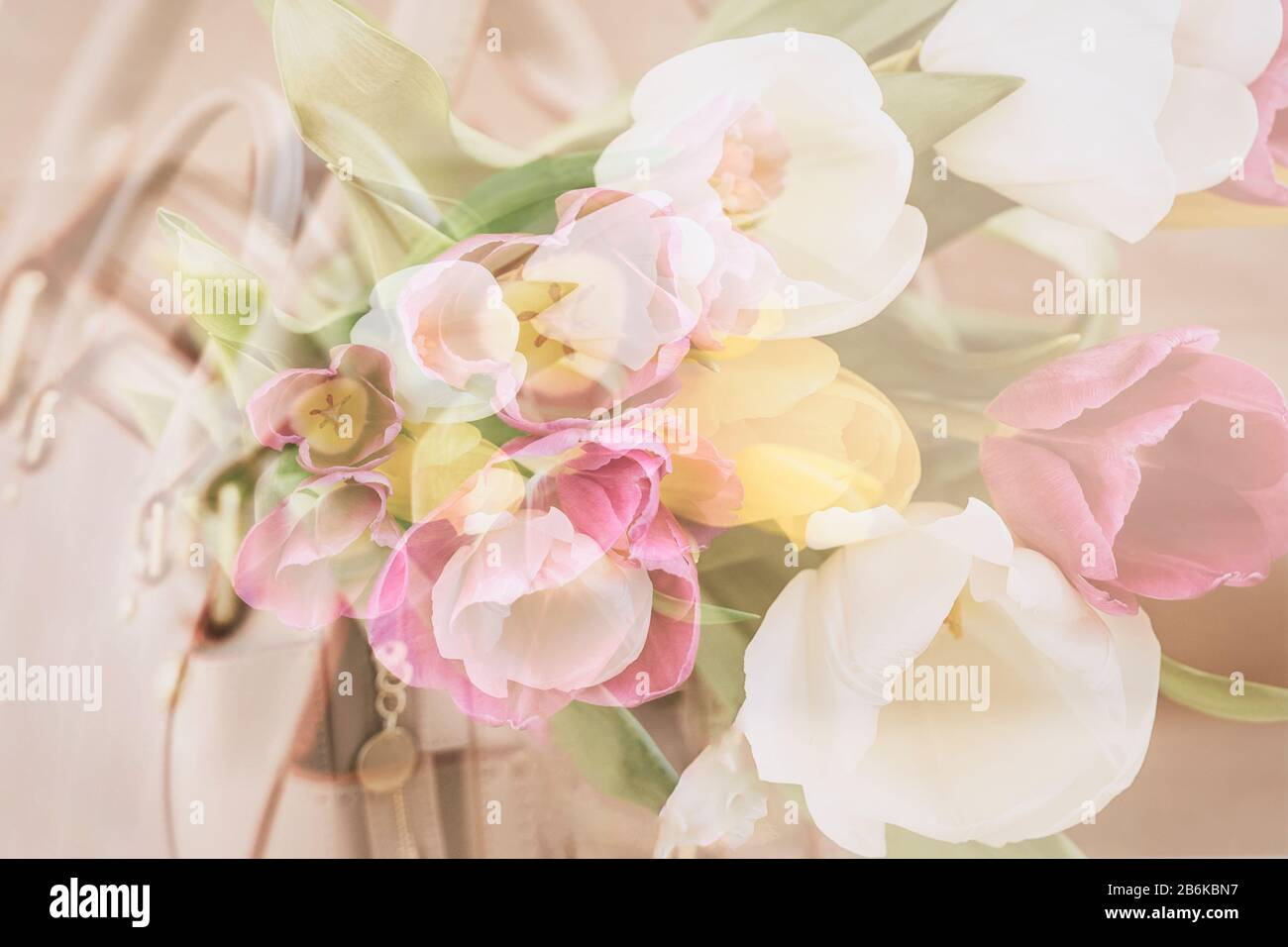 Blurred floral background, double exposure, colorful tulips. Concept of spring, holidays and gifts Stock Photo