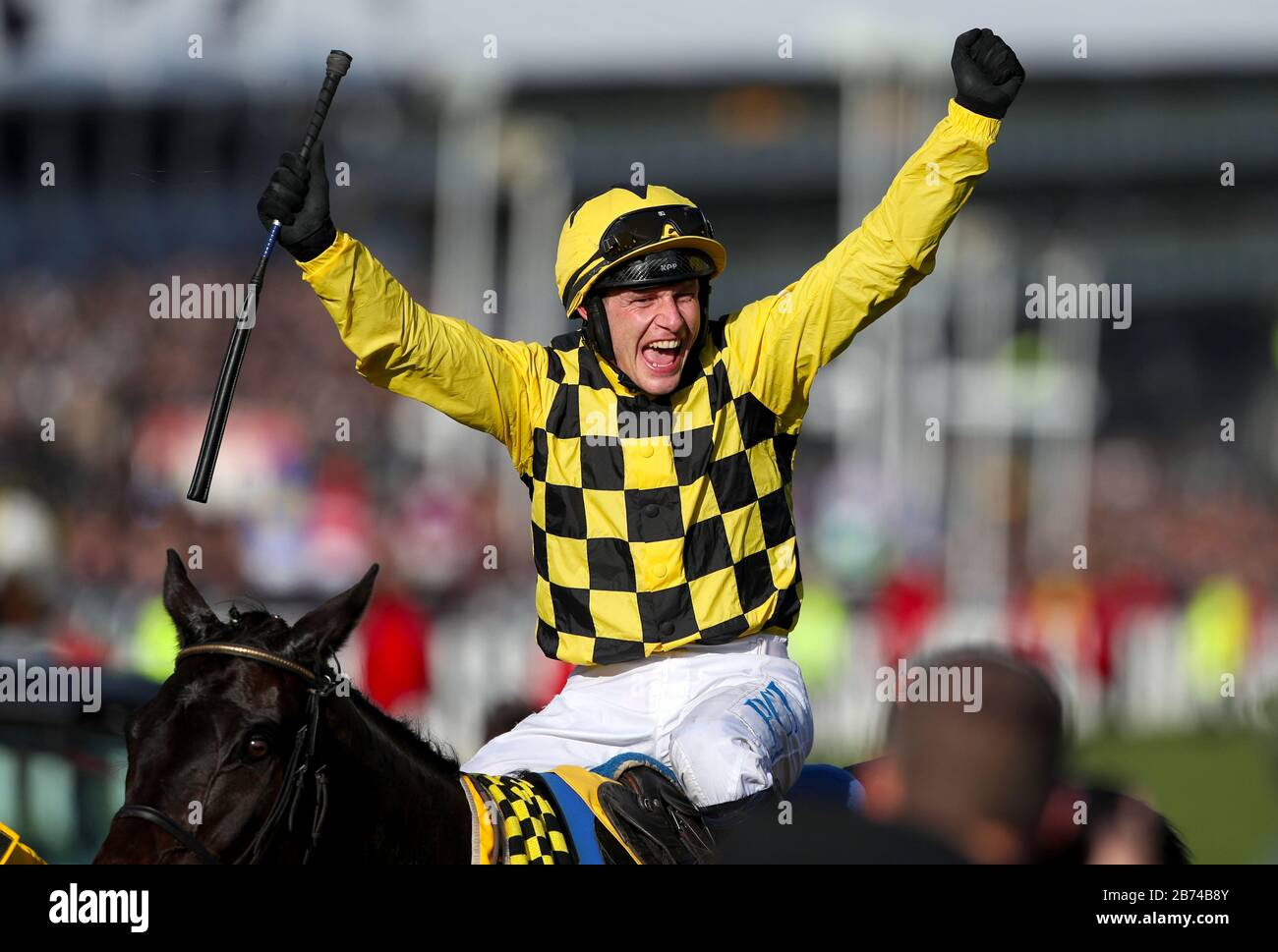Jockey Paul Townend celebrates winning the Magners Cheltenham Gold Cup Chase with Al Boum Photo during day four of the Cheltenham Festival at Cheltenham Racecourse. Stock Photo
