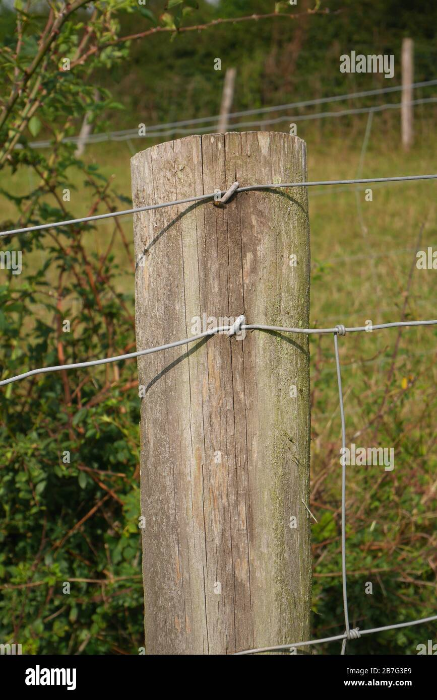 Wooden Fence Post High Resolution Stock Photography And Images Alamy