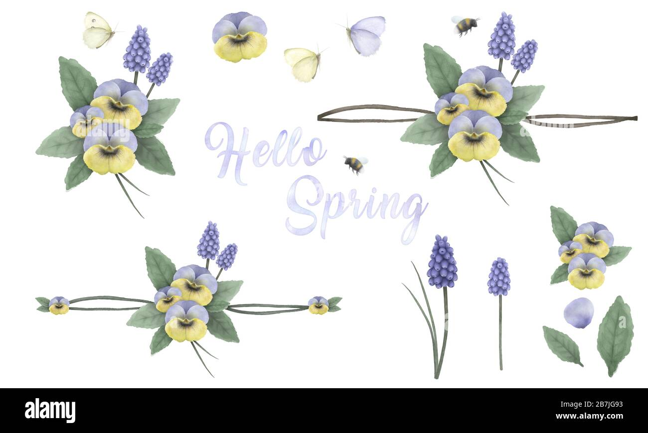 Hello spring, hand painted floral ornaments with viola's, grape hyacinth, bumblebee and butterfly, hand painted delicate and elegant flowers Stock Photo
