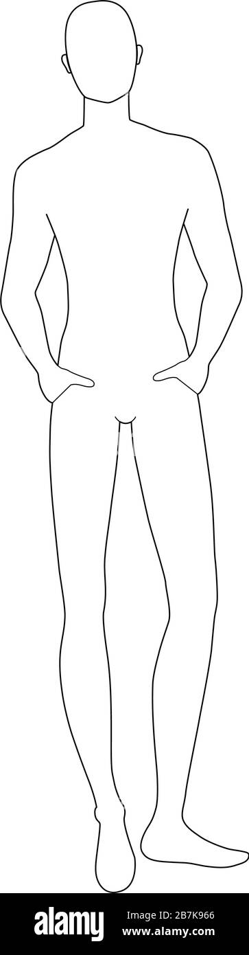 Body Template For Drawing from c8.alamy.com