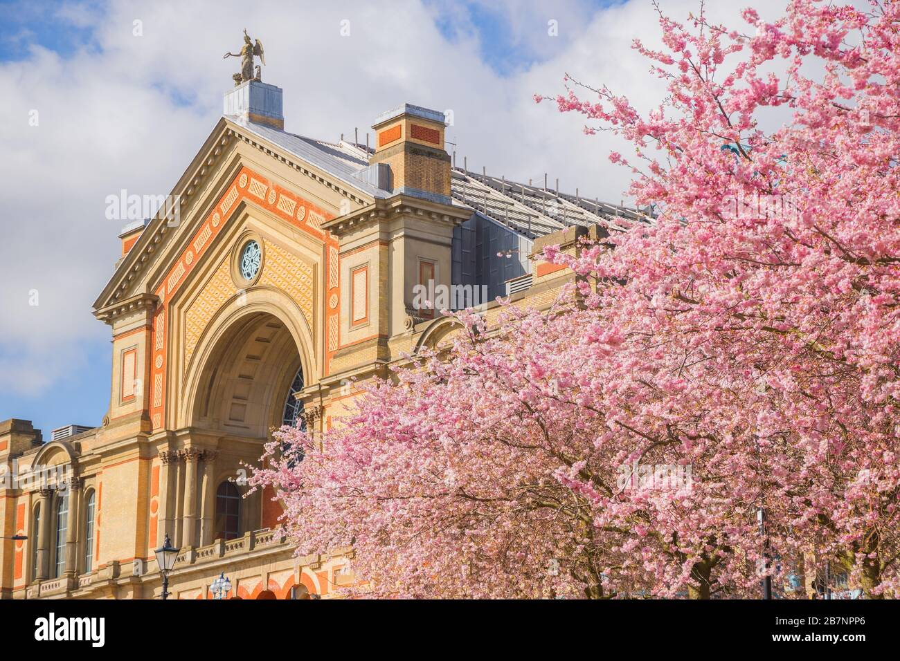 Springtime, Alexandra Palace with cherry blossoms in London, England Stock Photo