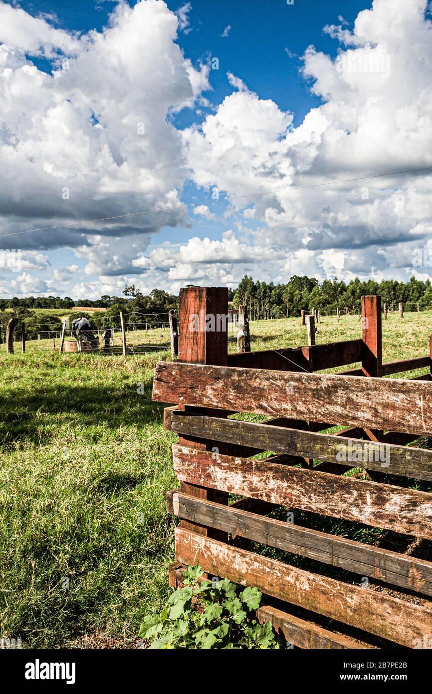 Guatambu Santa Catarina fonte: c8.alamy.com