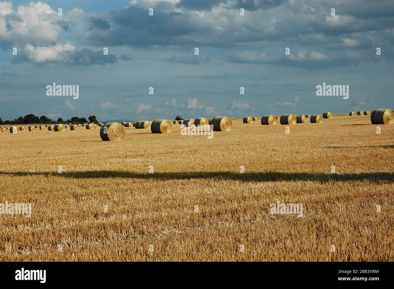 Haystacks under a cloudy summer day Stock Photo