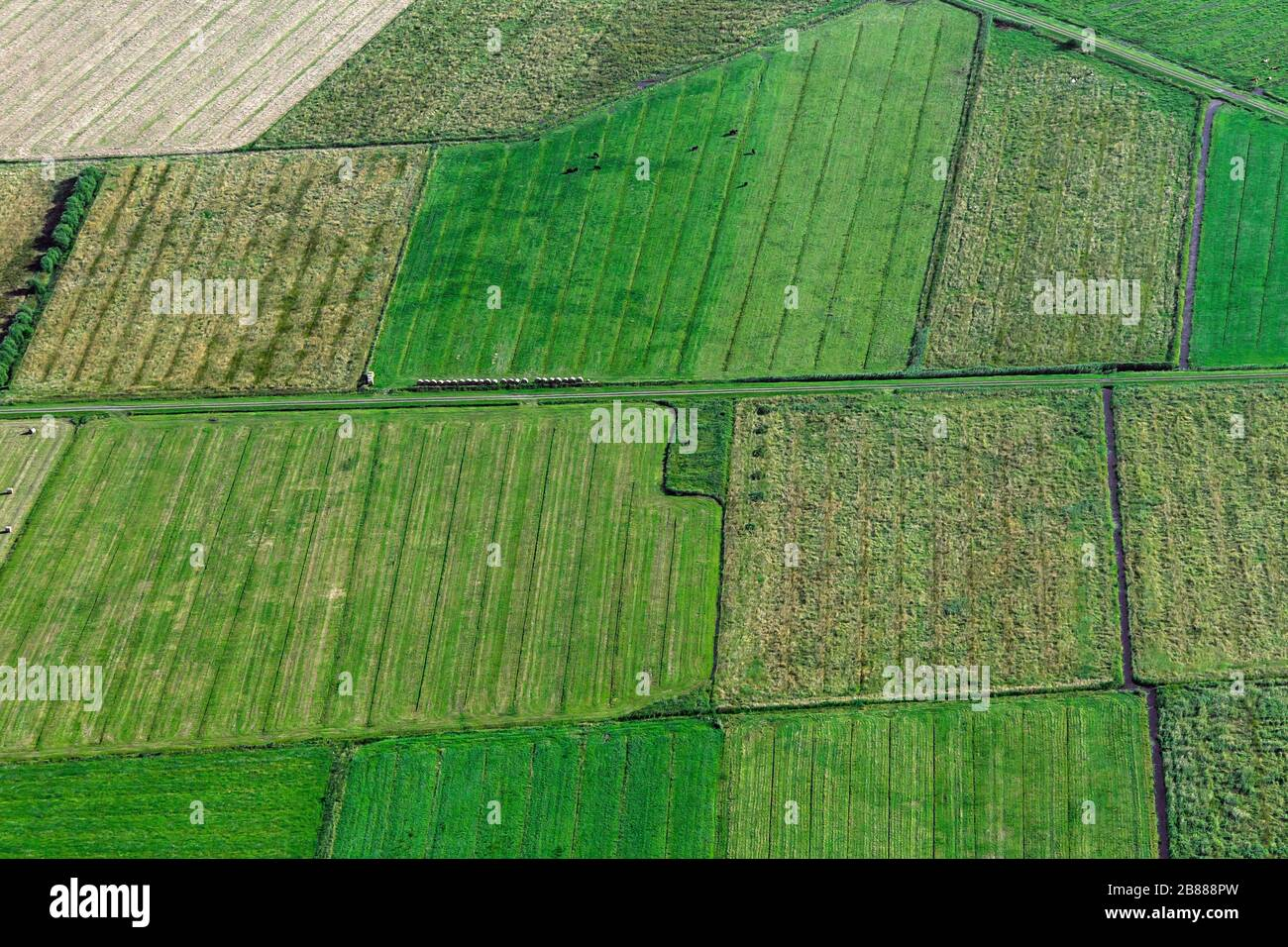 Aerial view over farmland showing tractor tracks and ditches in agricultural parcels / plots of land with meadows / grasslands in summer Stock Photo