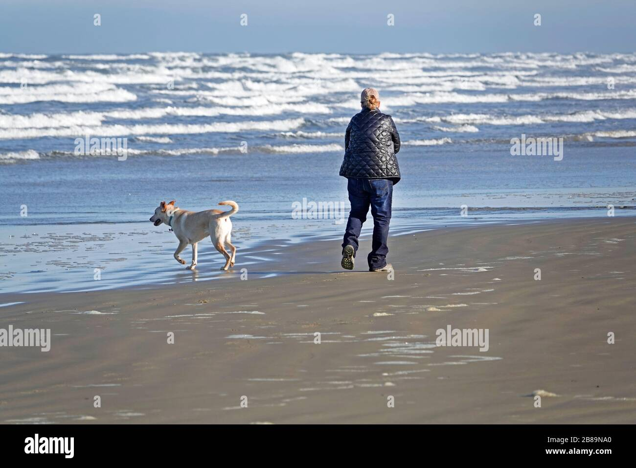 A woman walking her dog along a stretch of empty beach on the Oregon Pacific Coast near the town of Yachats, Oregon. Stock Photo