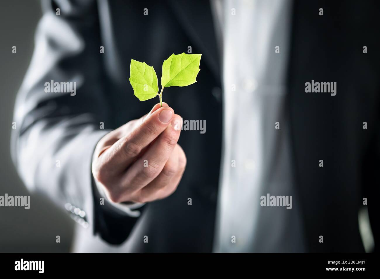 Eco friendly environmental lawyer or business man. Sustainable development, climate change, ecology and carbon footprint concept. Stock Photo