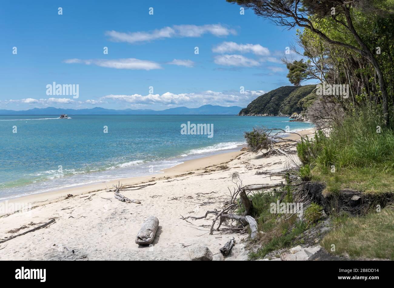 Beach Island Sand White Sand Coastal Landscaping Fairy Garden Ground Cover