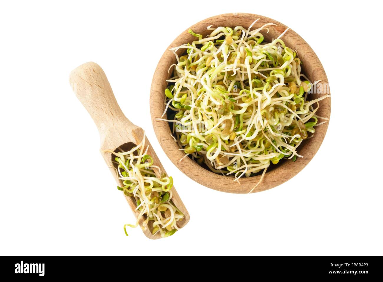 radish sprouts in wooden bowl and scoop isolated on white background. nutrition. food ingredient. Stock Photo
