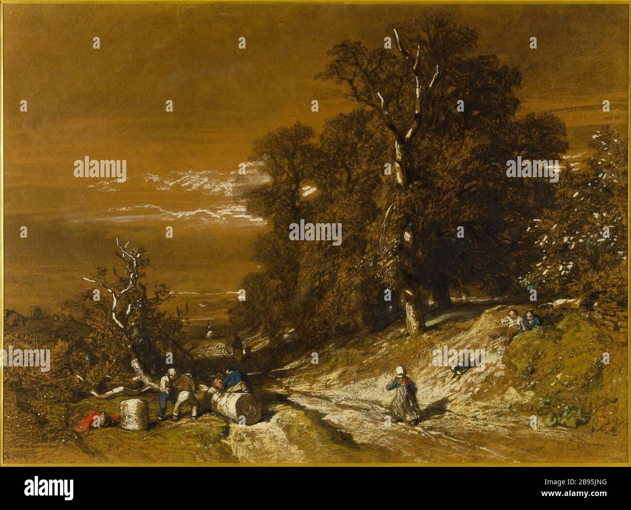 """wooded landscape Constant Troyon (1810-1865). """"Paysage boisé"""". Fusain, pastel et rehauts de gouache sur papier. Musée des Beaux-Arts de la Ville de Paris, Petit Palais. Stock Photo"""