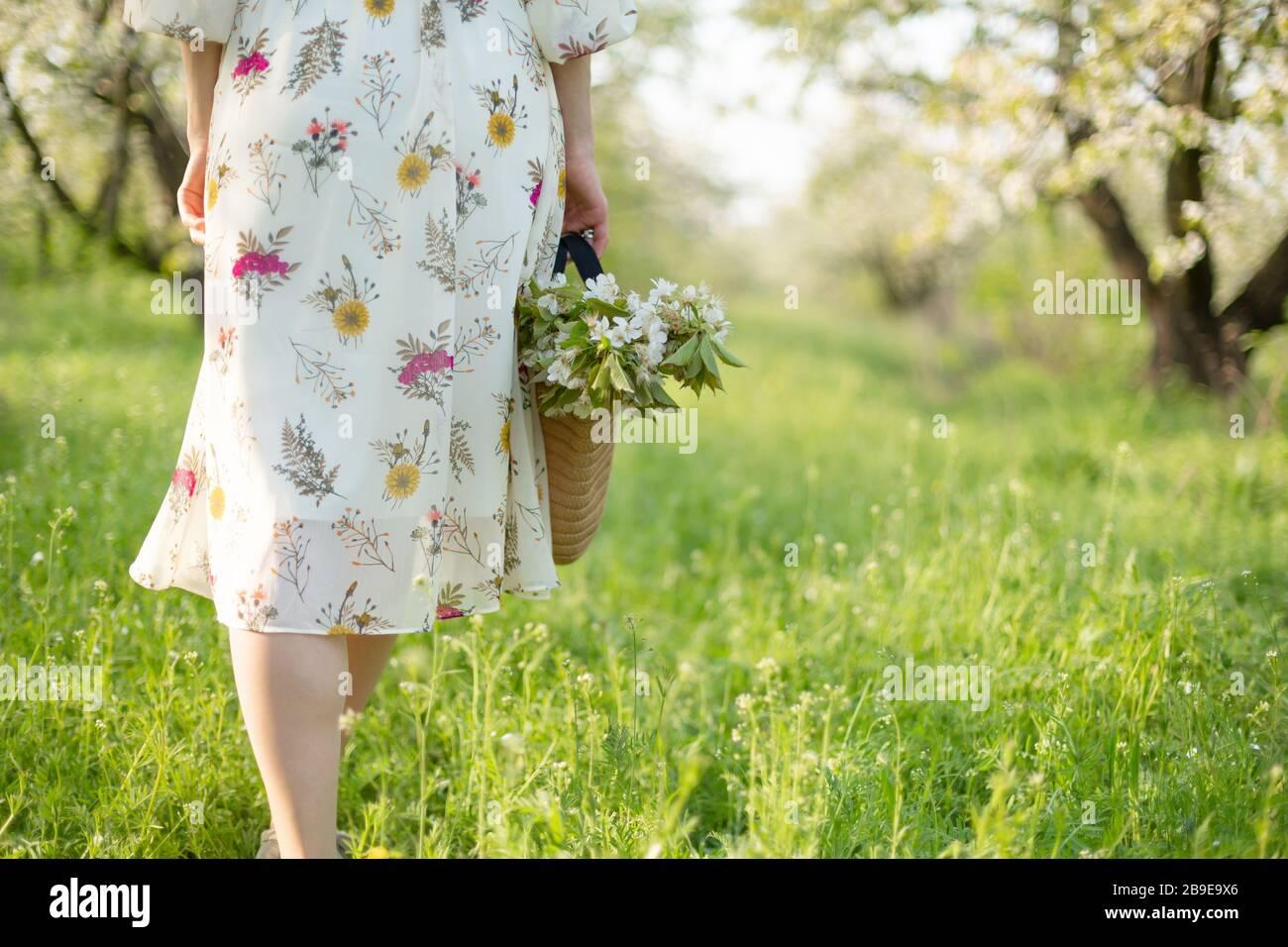 A girl walks through a spring green park enjoying the blooming nature. Stock Photo