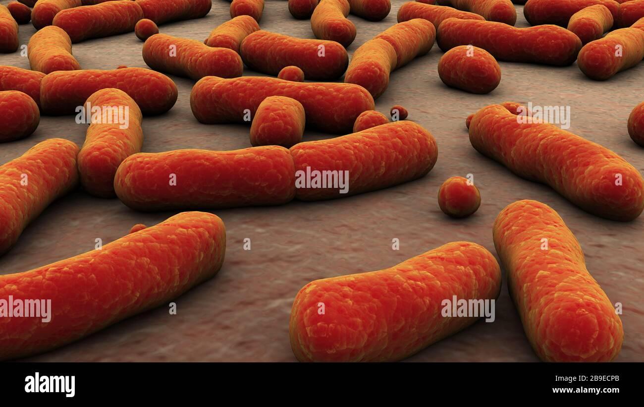 Conceptual image of bacteria. Stock Photo
