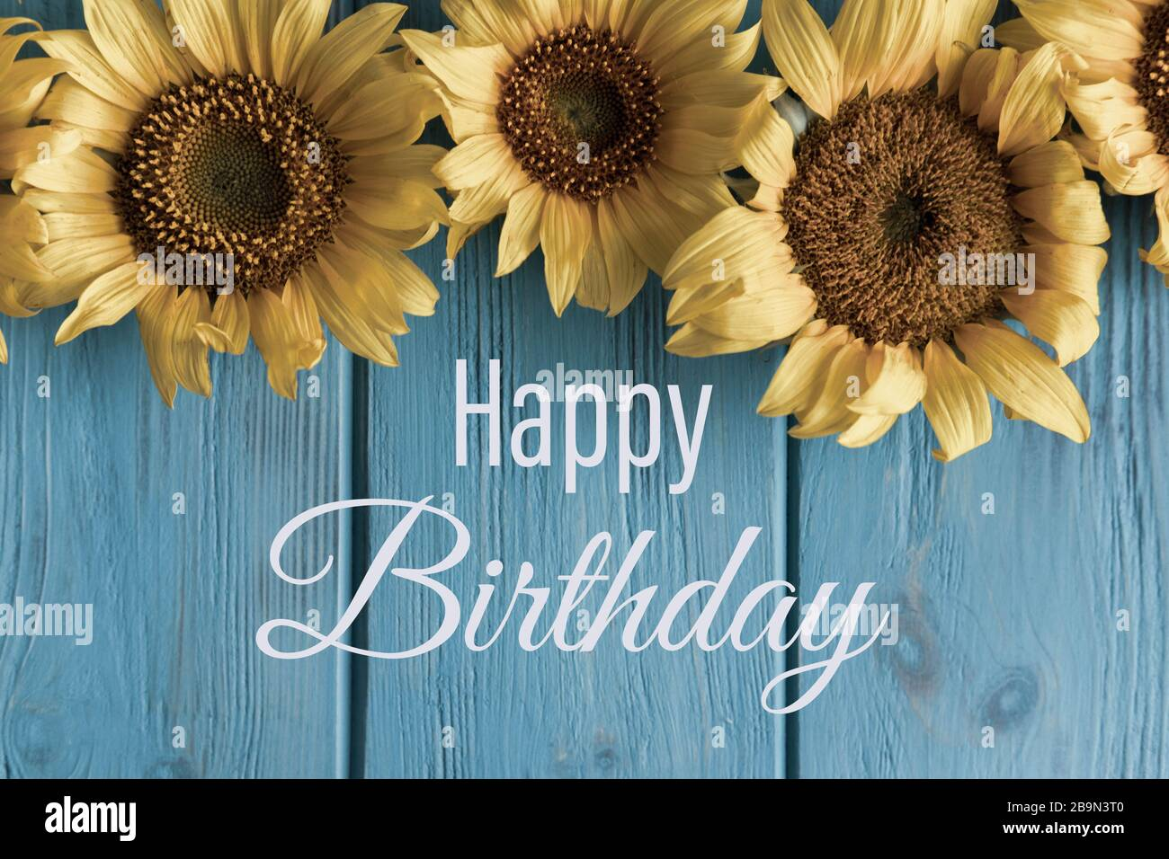 Happy Birthday Birthday Greeting Card With Sunflower Flowers And A Greeting Lettering Vintage Card Template For E Mail Newsletter Stock Photo Alamy