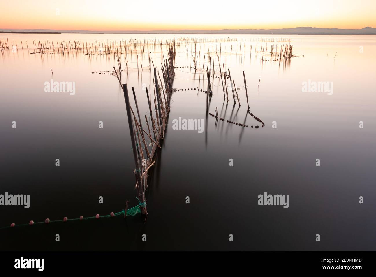 Image of the silky water of a lake from which reeds emerge with fishing nets tied to them. In the coastal lagoon of Valencia, Spain. Nature concept Stock Photo
