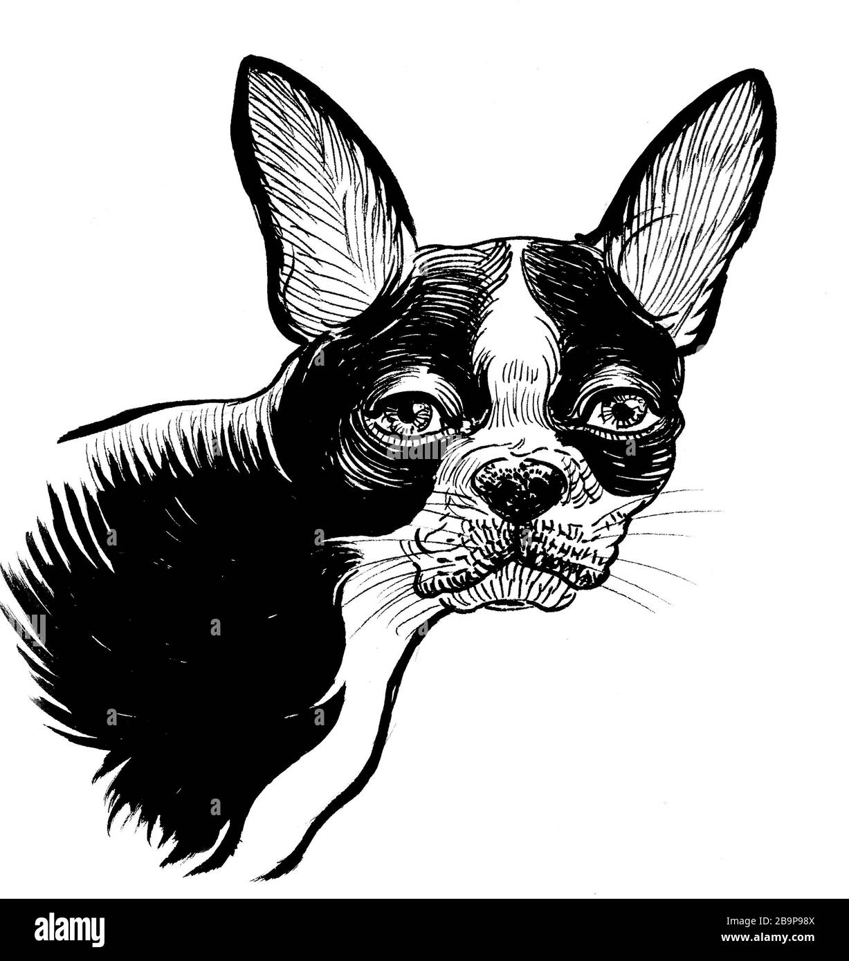 Cute Puppy Dog Ink Black And White Drawing Stock Photo Alamy
