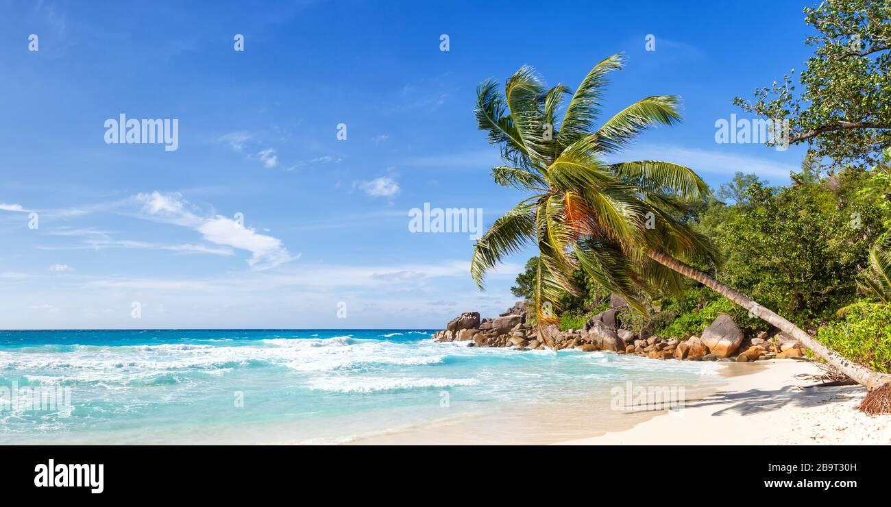 Seychelles Anse Georgette beach Praslin island palm panoramic view vacation paradise ocean sea water Stock Photo