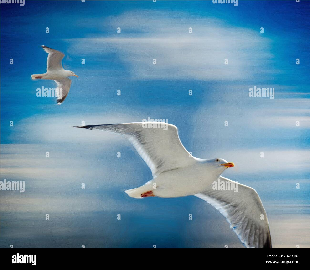 Flight Of Fancy High Resolution Stock Photography And Images Alamy