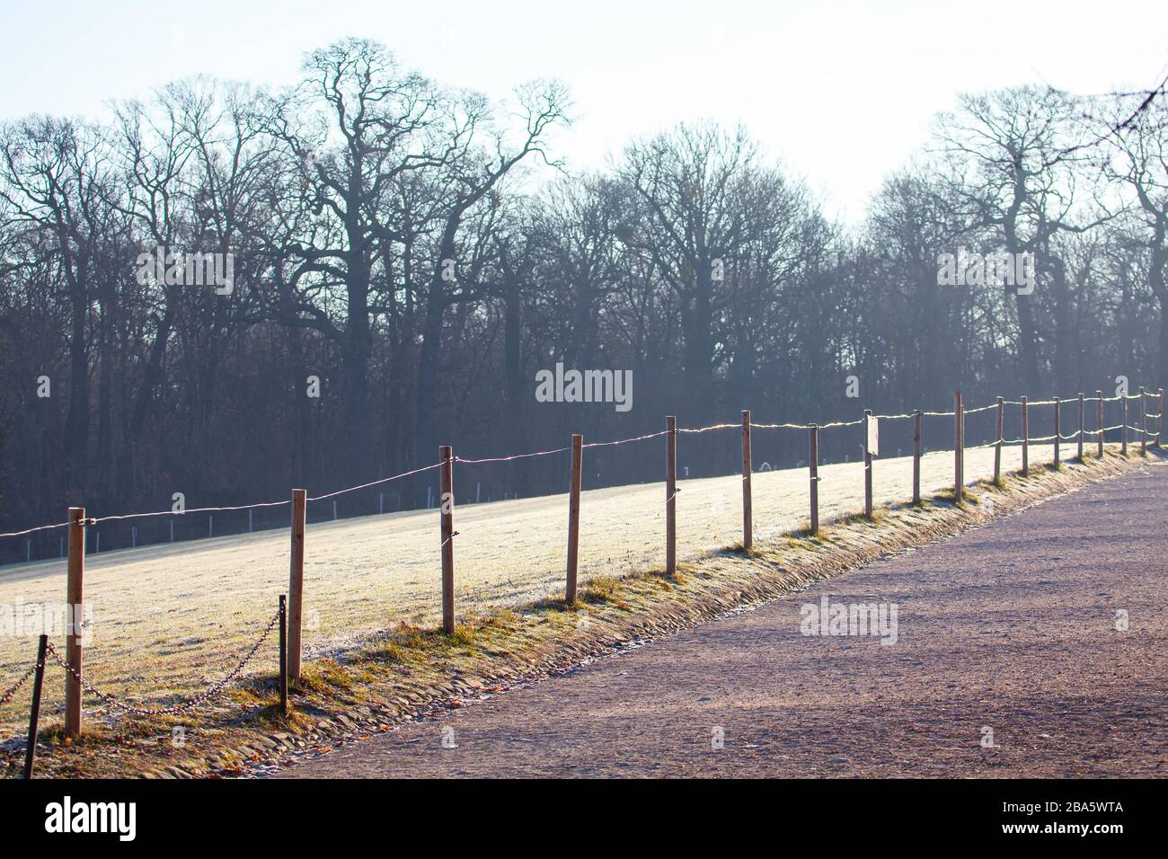 fence in the winter park , grass covered with rime Stock Photo