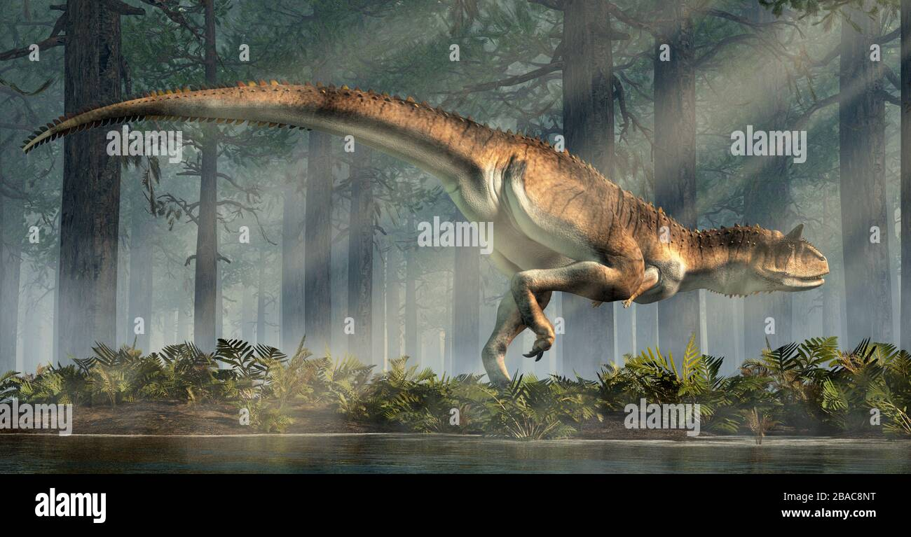 Carnotaurus was a carnivorous theropod dinosaur with horns on its head that lived in Cretaceous era South America. Here, one is depicted in a forest. Stock Photo