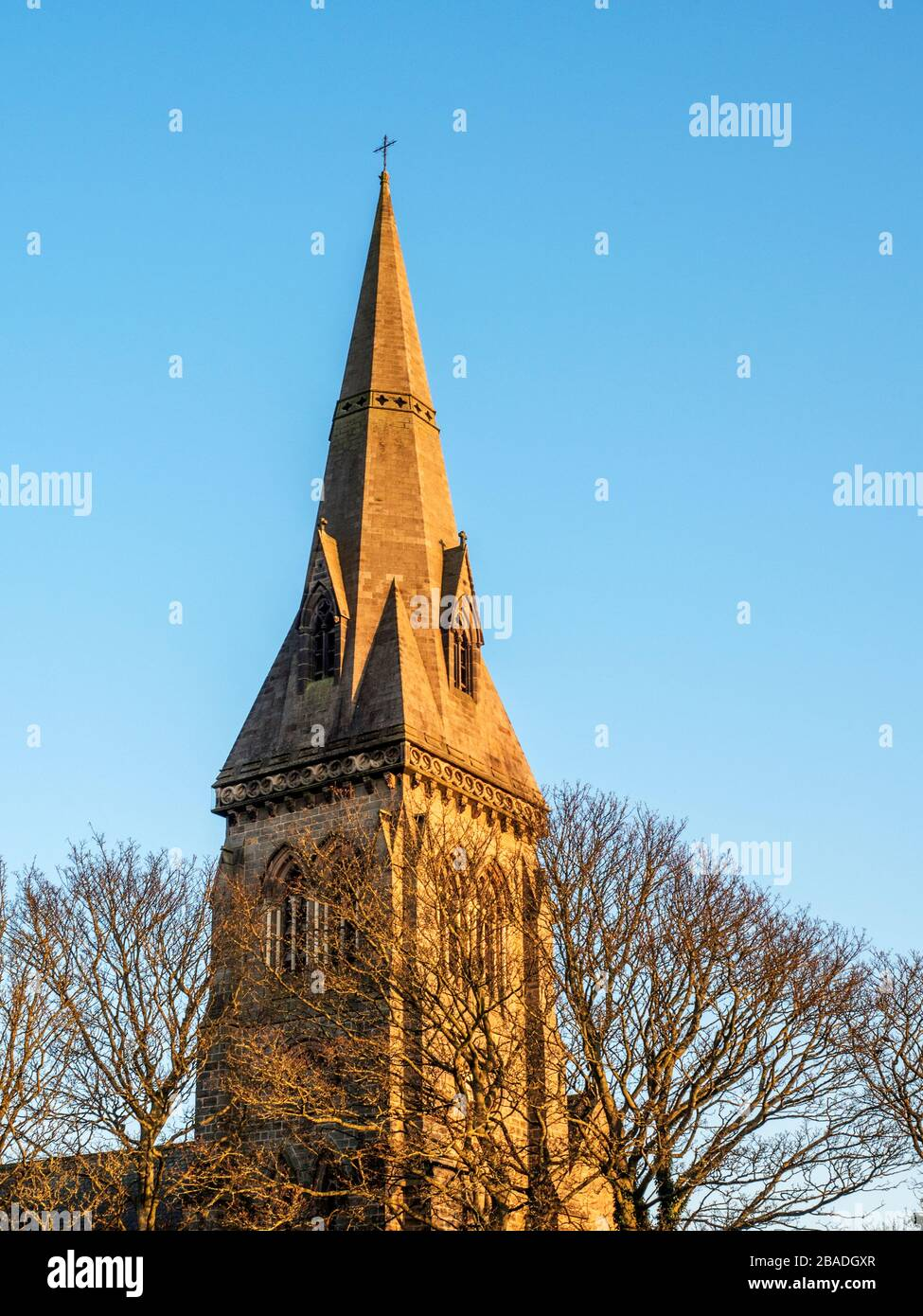 The broach spire of Holy Trinity Church above treetops lit by the setting sun in Knaresborough Yorkshire England Stock Photo