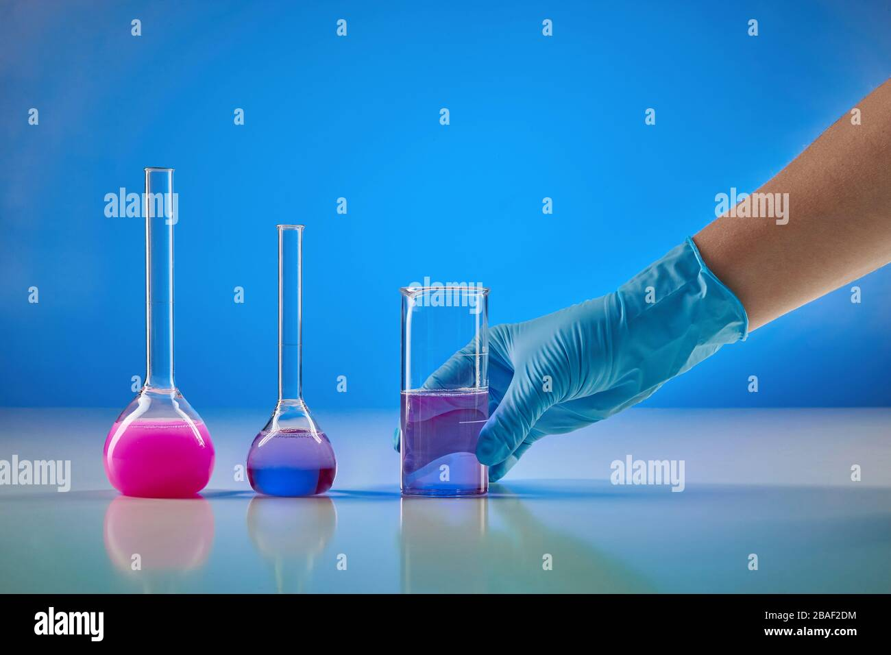 Hand in disposable glove holding beaker with purple liquid. Two medical flasks with colorful chemical reagents, blue background. Coronavirus laborator Stock Photo