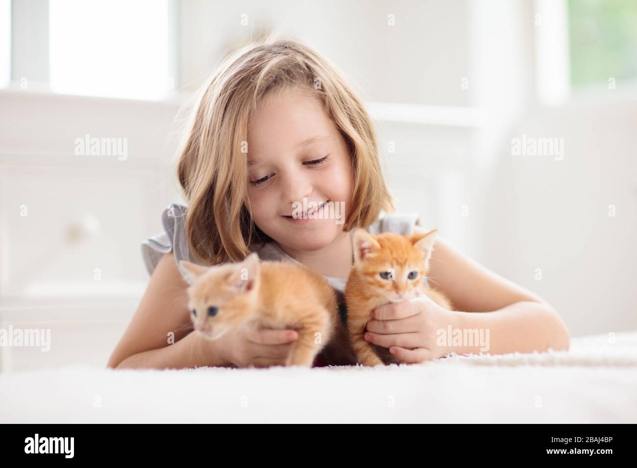 Child Holding Baby Cat Kids And Pets Little Girl Hugging Cute Little Kitten At Home Domestic Animal In Family With Kids Children With Pet Animals Stock Photo Alamy