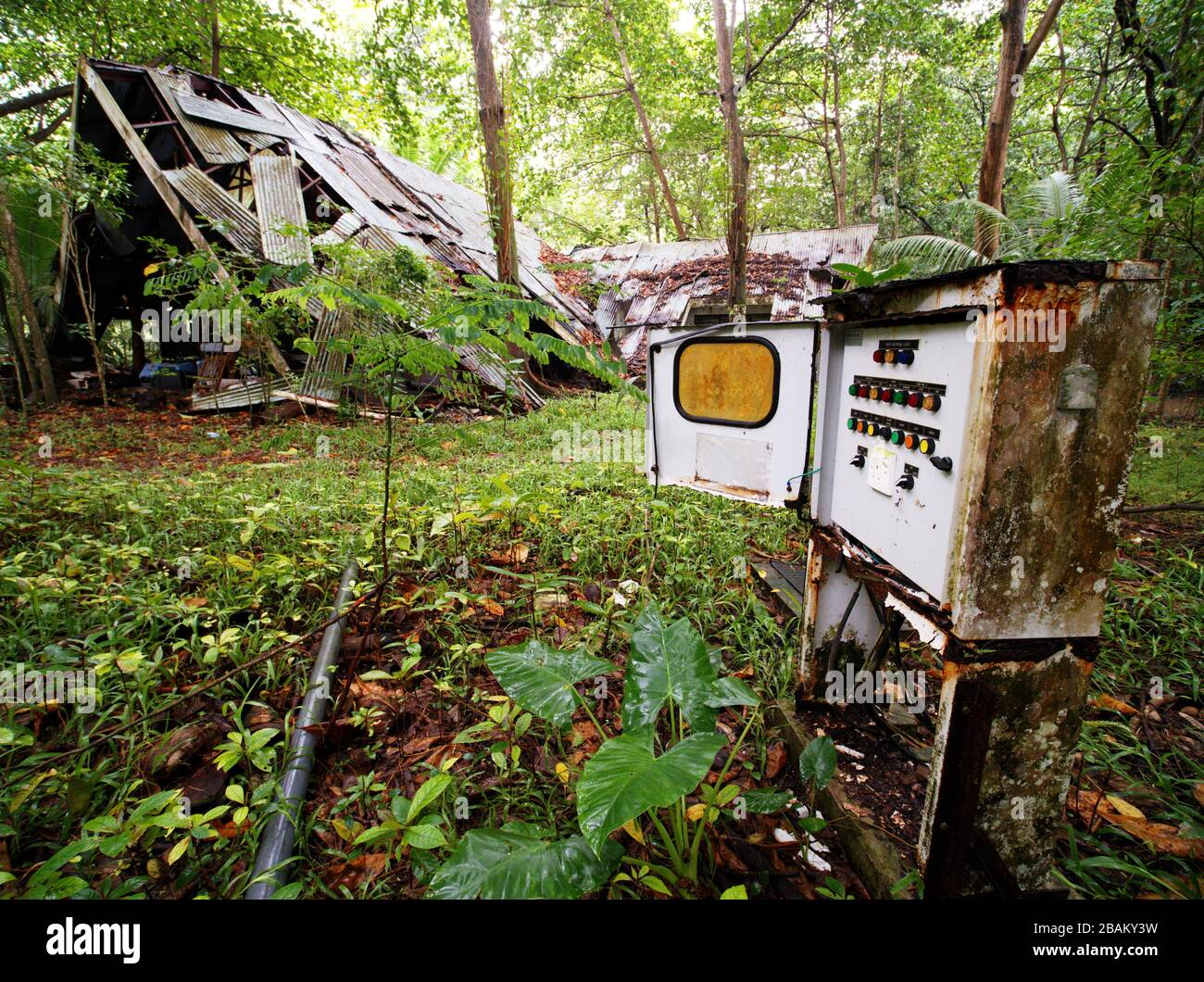 Electrical old switch box outdoor in the rainforest with a collapsed building the background, Mahe, Seychelles Stock Photo