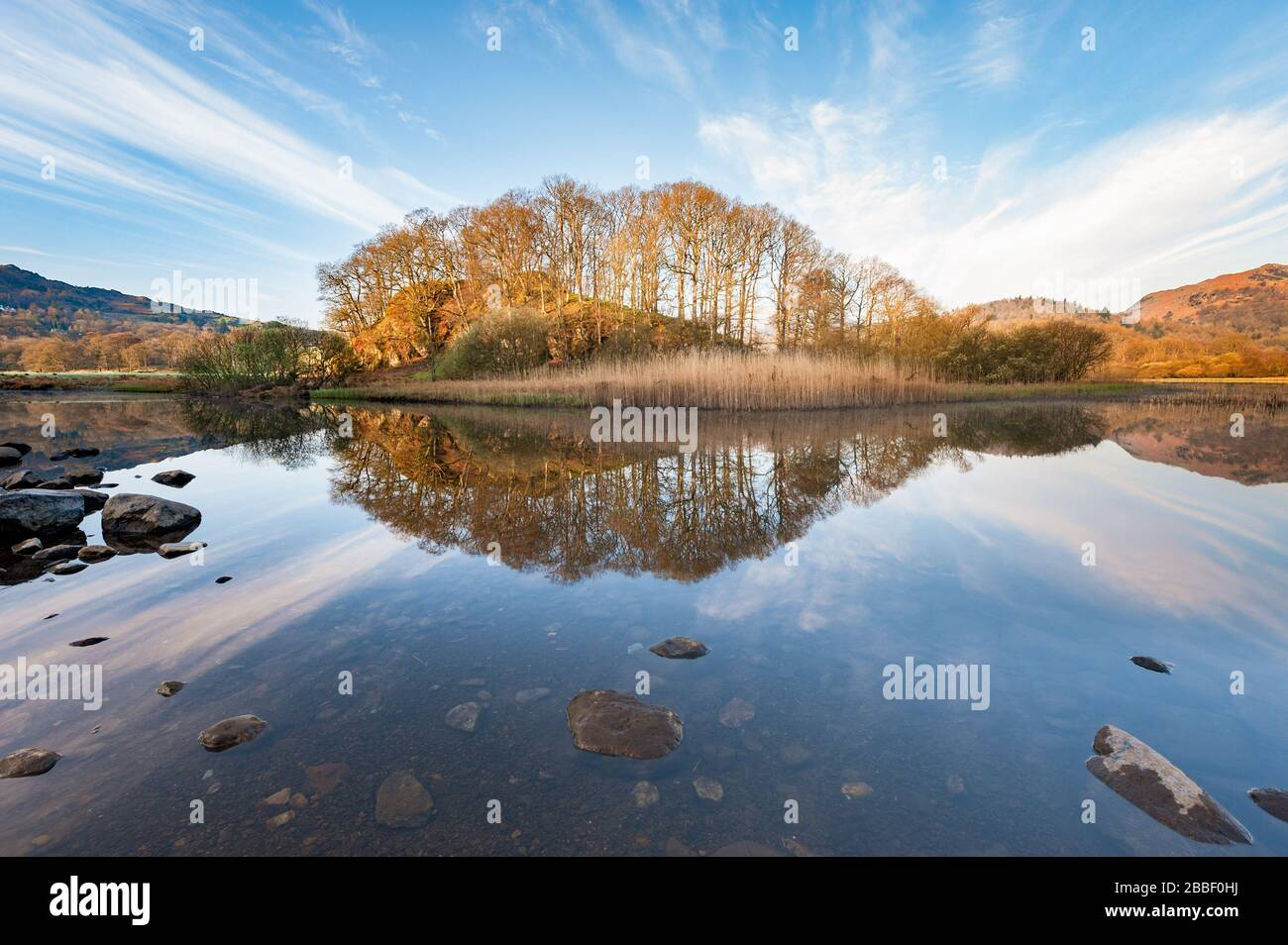 Tranquil woodland & fells landscape at Elter water a small lake / tarn near Elterwater in Great Langdale in the English Lake District, Cumbria Stock Photo