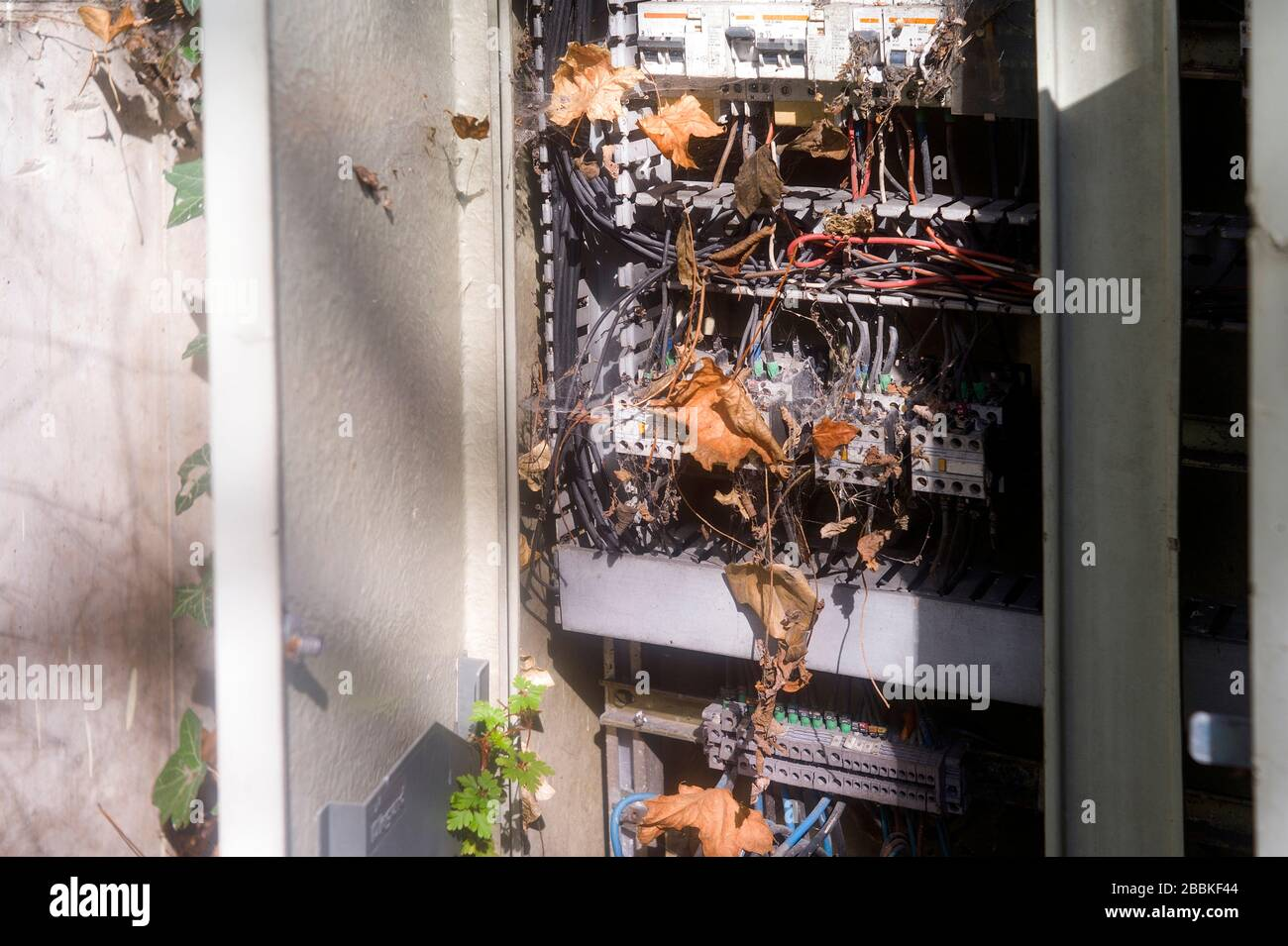 Seemingly abandoned outdoor fuse box with curcuit breakers Stock Photo