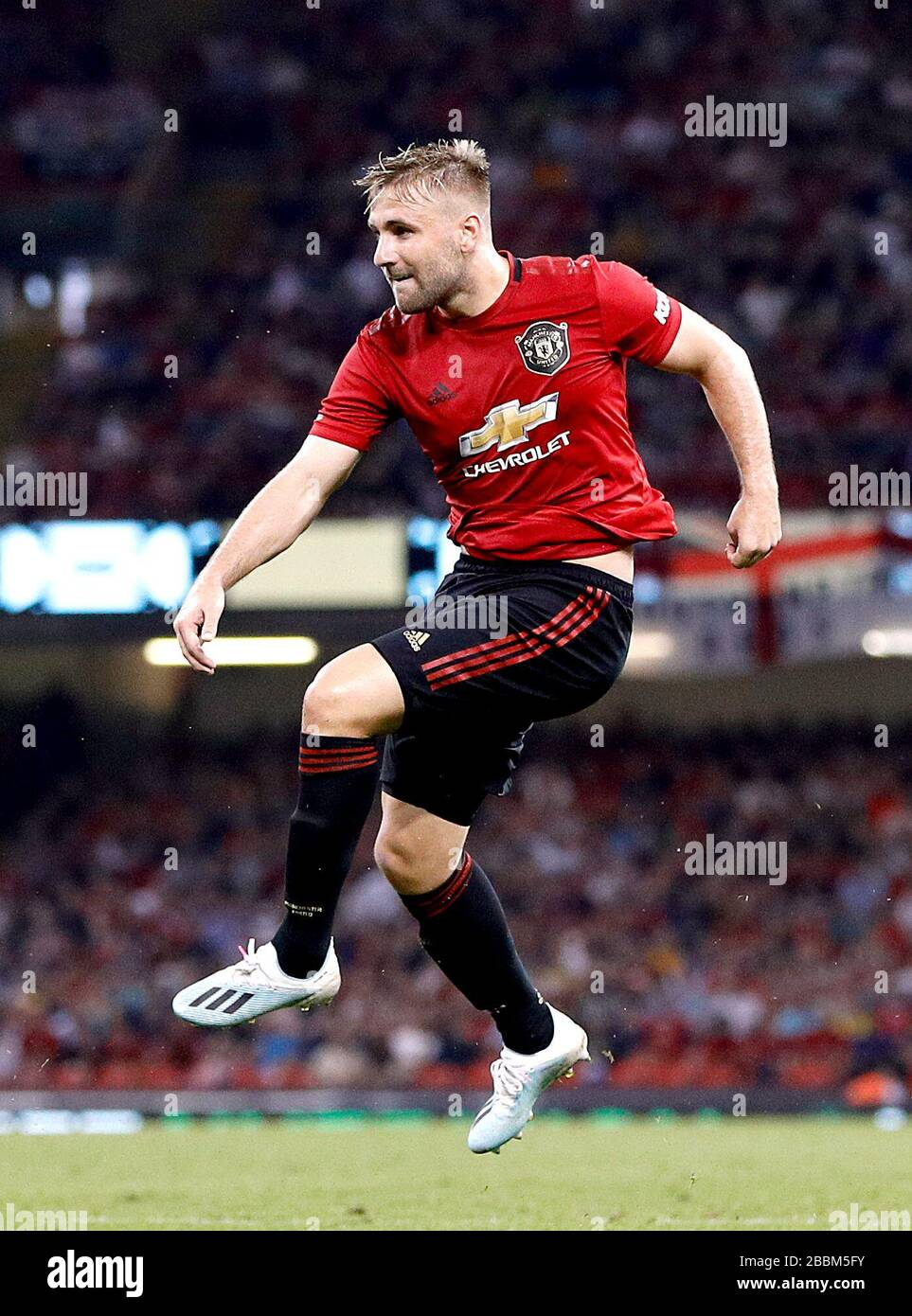 Luke Shaw Manchester United Stock S & Luke Shaw
